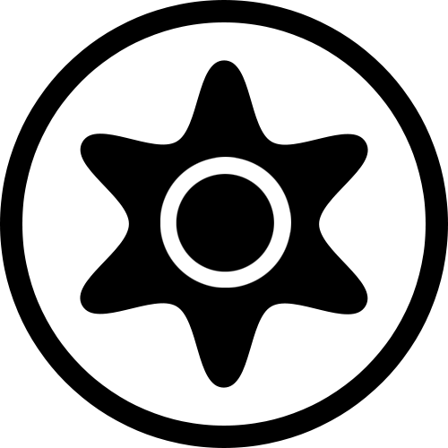 "12er Packung Reca Torx-Bit 1//4/"" TX 40 x 25 mm"